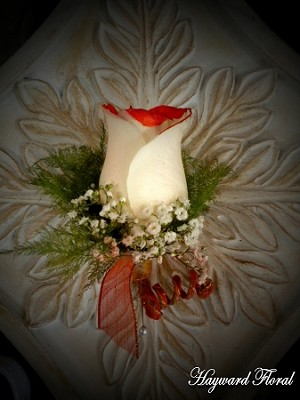 BTN-019 Rose Boutonniere