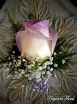 BTN-024 Rose Boutonniere