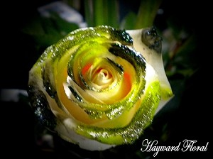 GDR-007 - 1 Dozen Glitter Tip South American Long Stem Roses (COLORS: Lime & Hunter Green Glitter)