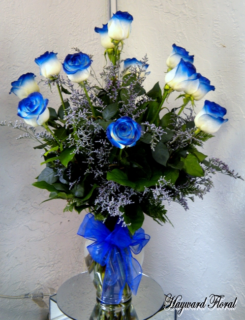 Color Tip Roses 1