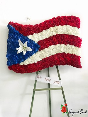 Puerto Rican Flag 10
