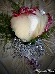 BTN-031 Rose Boutonniere
