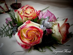 CRG-046 Roses Corsage