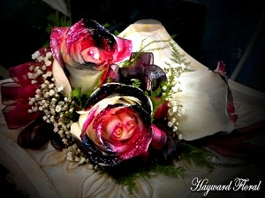 CRG-052 Roses Corsage