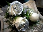 CRG-055 Roses Corsage
